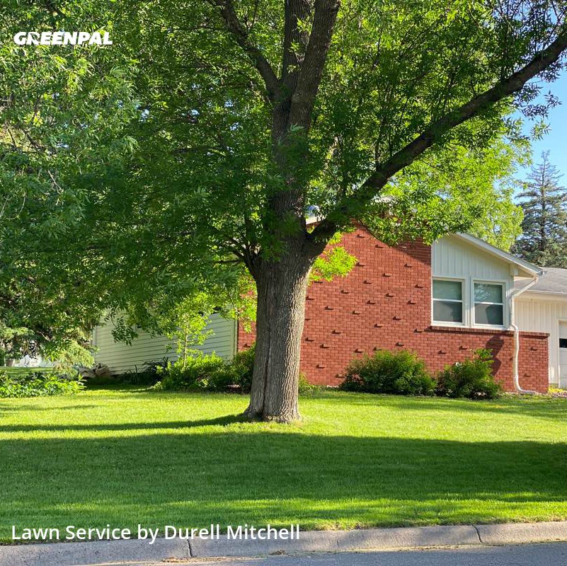 Lawn Cutin Burnsville,55337,Yard Mowing by Bound Landscaping , work completed in Aug , 2020