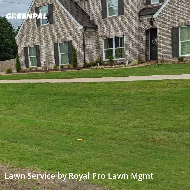 Lawn Care Servicein Olive Branch,38654,Lawn Cutting by Royal Pro Lawn Mgmt, work completed in Sep , 2020