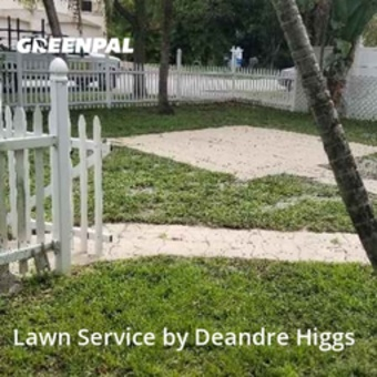 Lawn Maintenancein Fort Lauderdale,33315,Lawn Care by Bcb Lawn Care, work completed in Jul , 2020