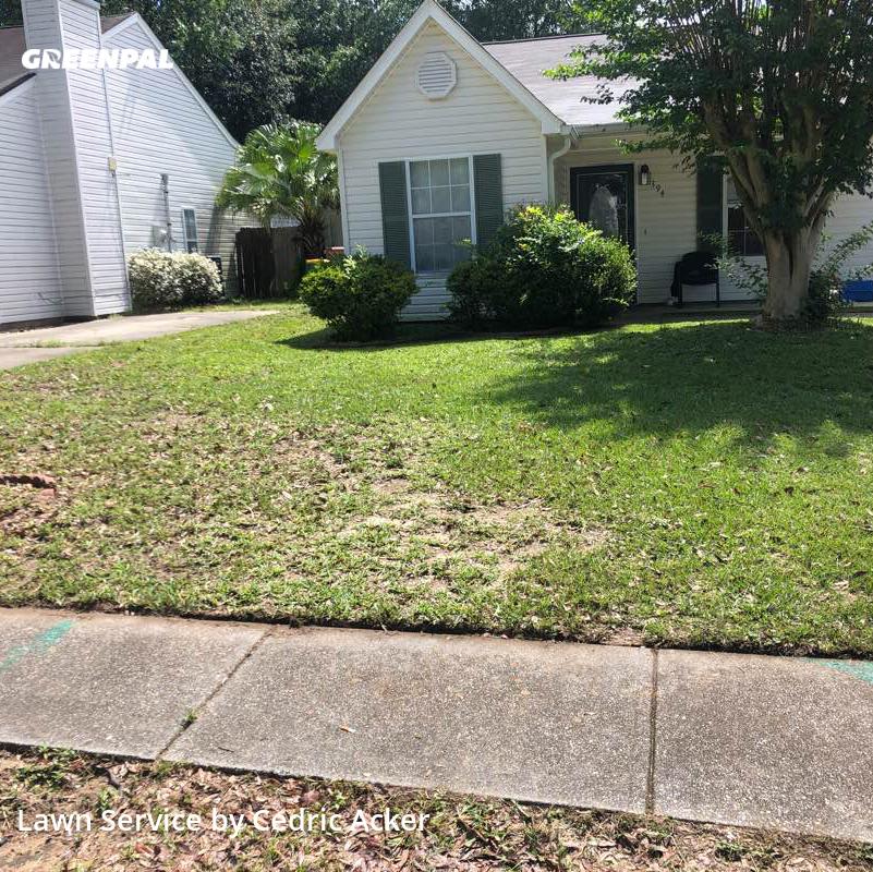 Lawn Cuttingin Biloxi,39531,Yard Mowing by Aps Llc, work completed in Oct , 2020