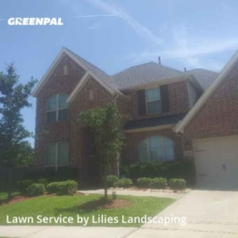 Yard Mowingin Cypress,77429,Lawn Mowing Service by Lilies Landscaping , work completed in Jul , 2020
