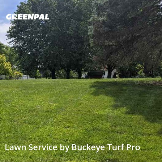 Lawn Cuttingin West Chester,45069,Lawn Care by Buckeye Turf Pro, work completed in Aug , 2020