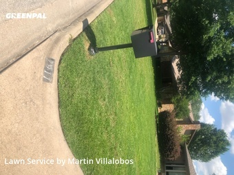 Grass Cutin Grapevine,76051,Yard Mowing by Precision Tree & Lawn, work completed in Jul , 2020