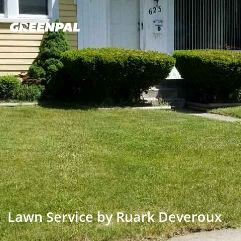 Lawn Cutin Royal Oak,48073,Lawn Mowing Service by Veteran Lawn Care Usa, work completed in Sep , 2020