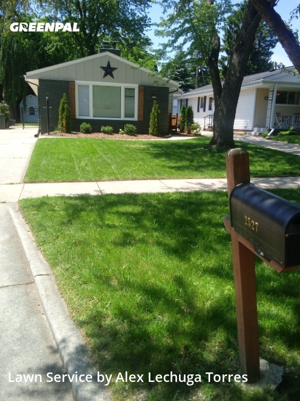 Lawn Mowin Wauwatosa,53226,Lawn Cutting by Torres Lawn Care, work completed in Aug , 2020
