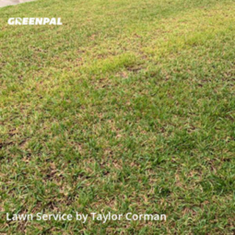 Lawn Care Servicein Winter Park,32789,Yard Cutting by Sea Palm Services, work completed in Jul , 2020
