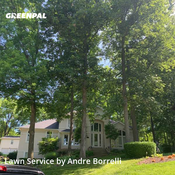 Lawn Carein Manchester,63011,Yard Mowing by Juniors Lawn Care, work completed in Aug , 2020