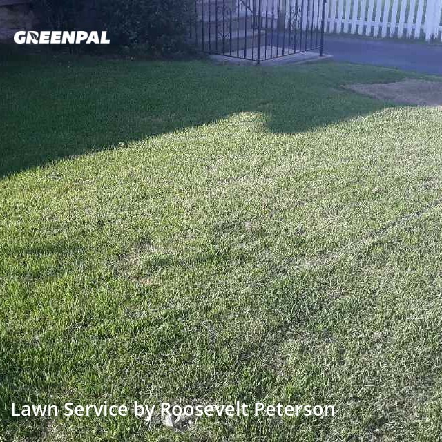Lawn Mowin Lansdowne,19050,Lawn Cut by Sams Llc, work completed in Jul , 2020