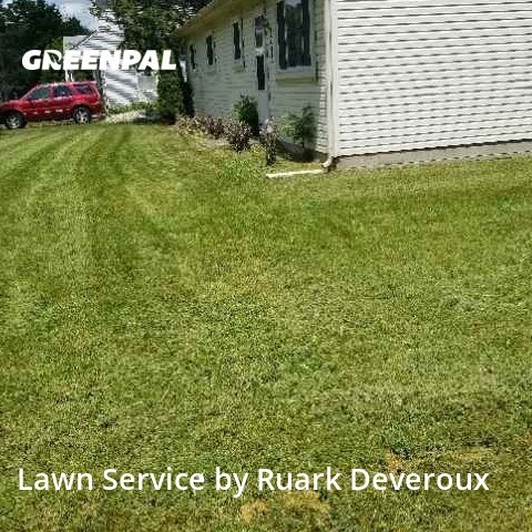 Grass Cutin Rochester Hills,48307,Lawn Mowing Service by Veteran Lawn Care Usa, work completed in Aug , 2020