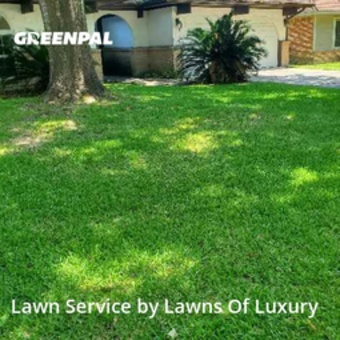 Lawn Mowingin Spring,77373,Lawn Mow by Lawns Of Luxury , work completed in Jul , 2020