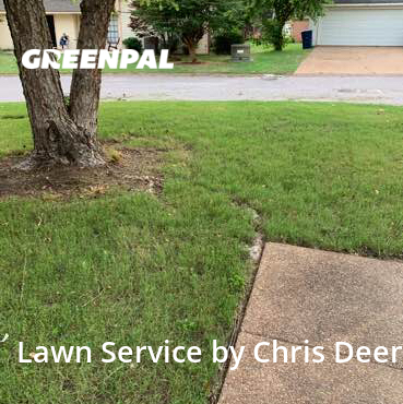Lawn Servicein Cordova,38018,Lawn Cut by Lawntech Pros, work completed in Sep , 2020