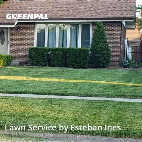 Yard Mowingin Tinley Park,60487,Lawn Mowing Service by Cheriff, work completed in Aug , 2020