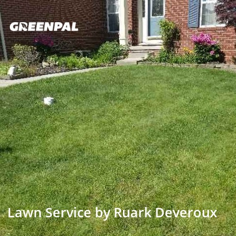 Lawn Cuttingin Warren,48092,Yard Cutting by Veteran Lawn Care Usa, work completed in Jul , 2020