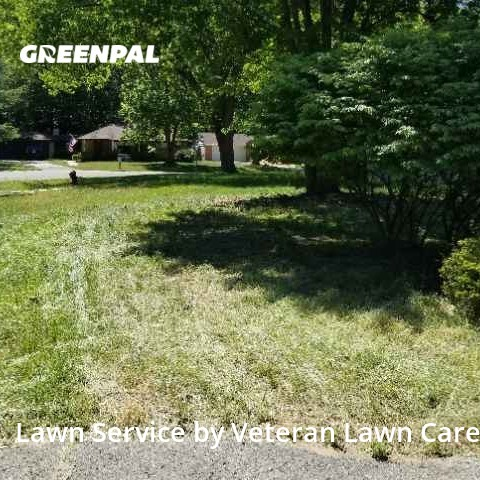 Grass Cutin Southfield,48033,Lawn Cutting by Veteran Lawn Care Usa, work completed in Aug , 2020