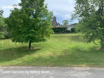 Lawn Servicein Franklin,37069,Lawn Mowing by Bush And Shrubs Lawn, work completed in Sep , 2020
