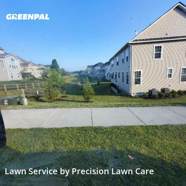 Lawn Maintenancein Upper Marlboro,20774,Yard Mowing by Precision Lawn Care , work completed in Jul , 2020