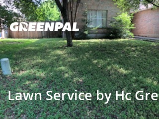 Lawn Maintenancein Pflugerville,78660,Lawn Care Service by Hc Green Lawns, work completed in Aug , 2020