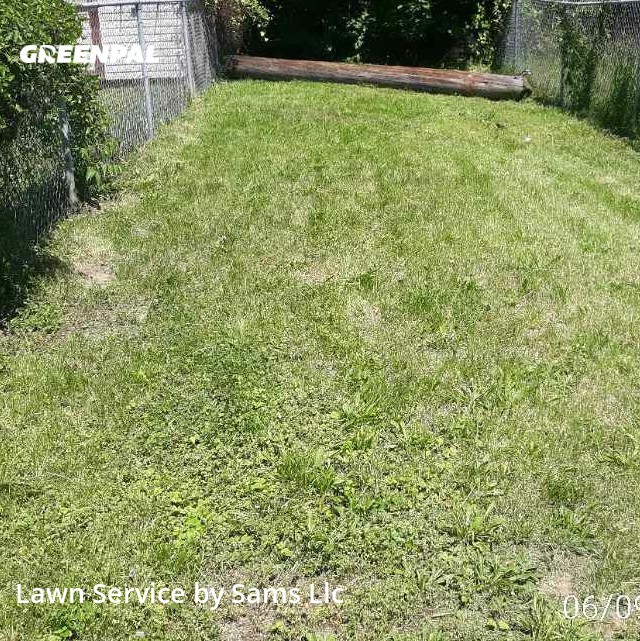 Lawn Mowingin Lansdowne,19050,Lawn Care by Sams Llc, work completed in Jul , 2020