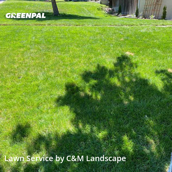 Lawn Cuttingin Englewood,80110,Grass Cutting by C&M Landscape, work completed in Aug , 2020