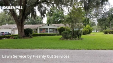Grass Cutin Plant City,33566,Lawn Mow by Freshly Cut Services, work completed in Aug , 2020