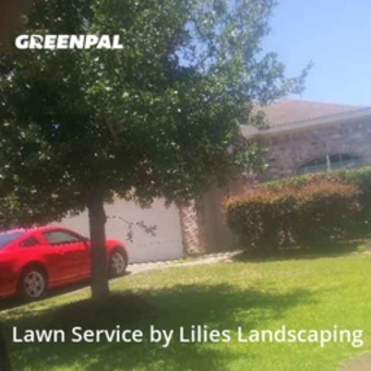 Yard Cuttingin Tomball,77375,Lawn Service by Lilies Landscaping , work completed in Jul , 2020