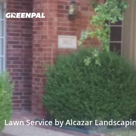 Lawn Mowingin Allen,75013,Lawn Maintenance by Alcazar Landscaping, work completed in Jul , 2020