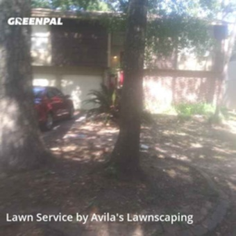 Grass Cuttingin Spring,77380,Lawn Service by Avila's Lawnscaping , work completed in Jul , 2020