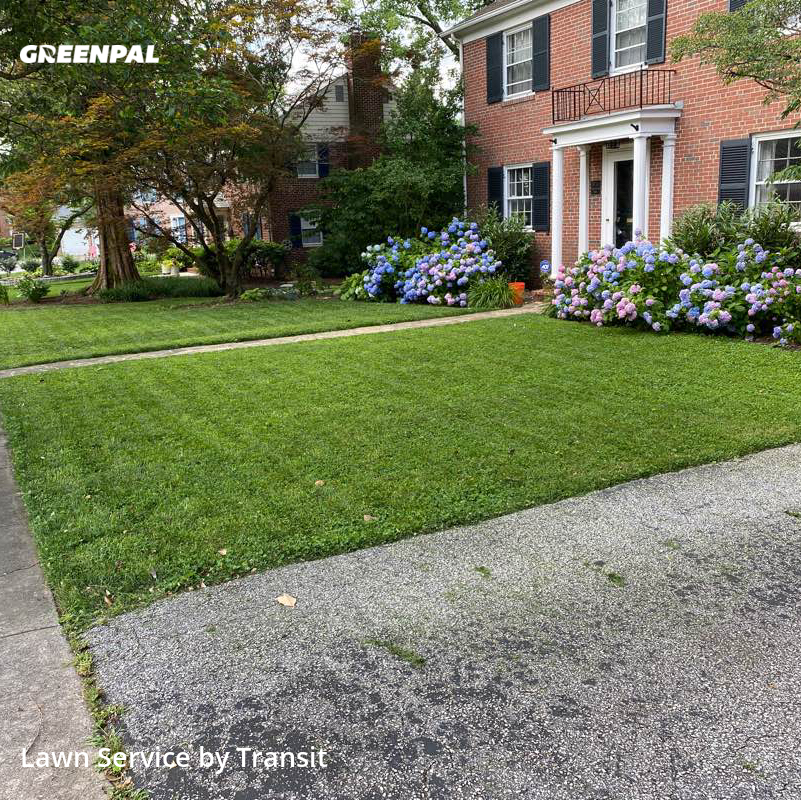 Lawn Cuttingin Baltimore,21212,Grass Cutting by Transit , work completed in Jul , 2020