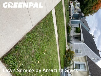 Lawn Cuttingin Dearborn,48124,Lawn Mow by Amazing Grass, work completed in Oct , 2020