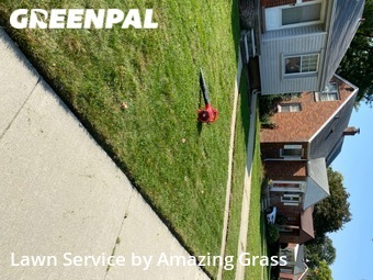Lawn Mowingin Dearborn,48124,Lawn Cut by Amazing Grass, work completed in Oct , 2020