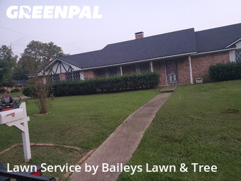 Grass Cutin Longview,75604,Lawn Mow by Baileys Lawn & Tree , work completed in Oct , 2020