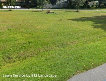 Lawn Cutin Tampa,33603,Lawn Mowing by 813 Landscape, work completed in Sep , 2020