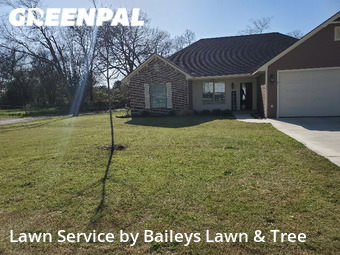 Grass Cutting nearby Longview, TX, 75604