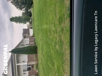 Grass Cut nearby Murfreesboro, TN, 37128
