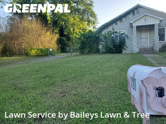 Lawn Care nearby Tyler, TX, 75701