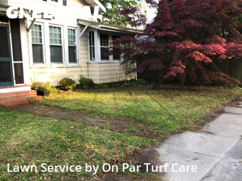 Lawn Care Service nearby Norfolk, VA, 23502