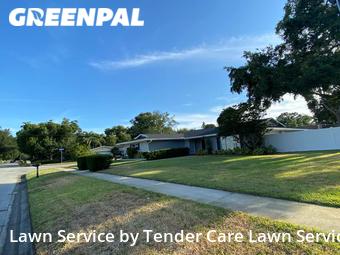 Lawn Cut nearby Clearwater, FL, 33756