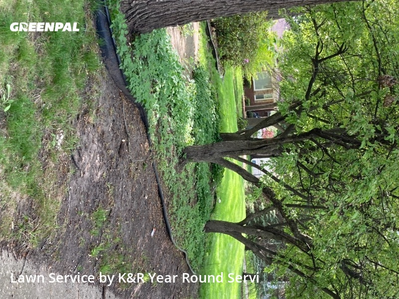 Yard Mowing nearby Dearborn, MI, 48124