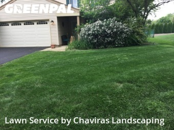 Grass Cutting nearby Naperville, IL, 60565