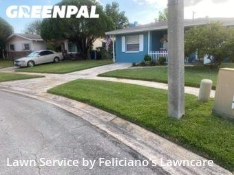 Grass Cut nearby Tampa, FL, 33616