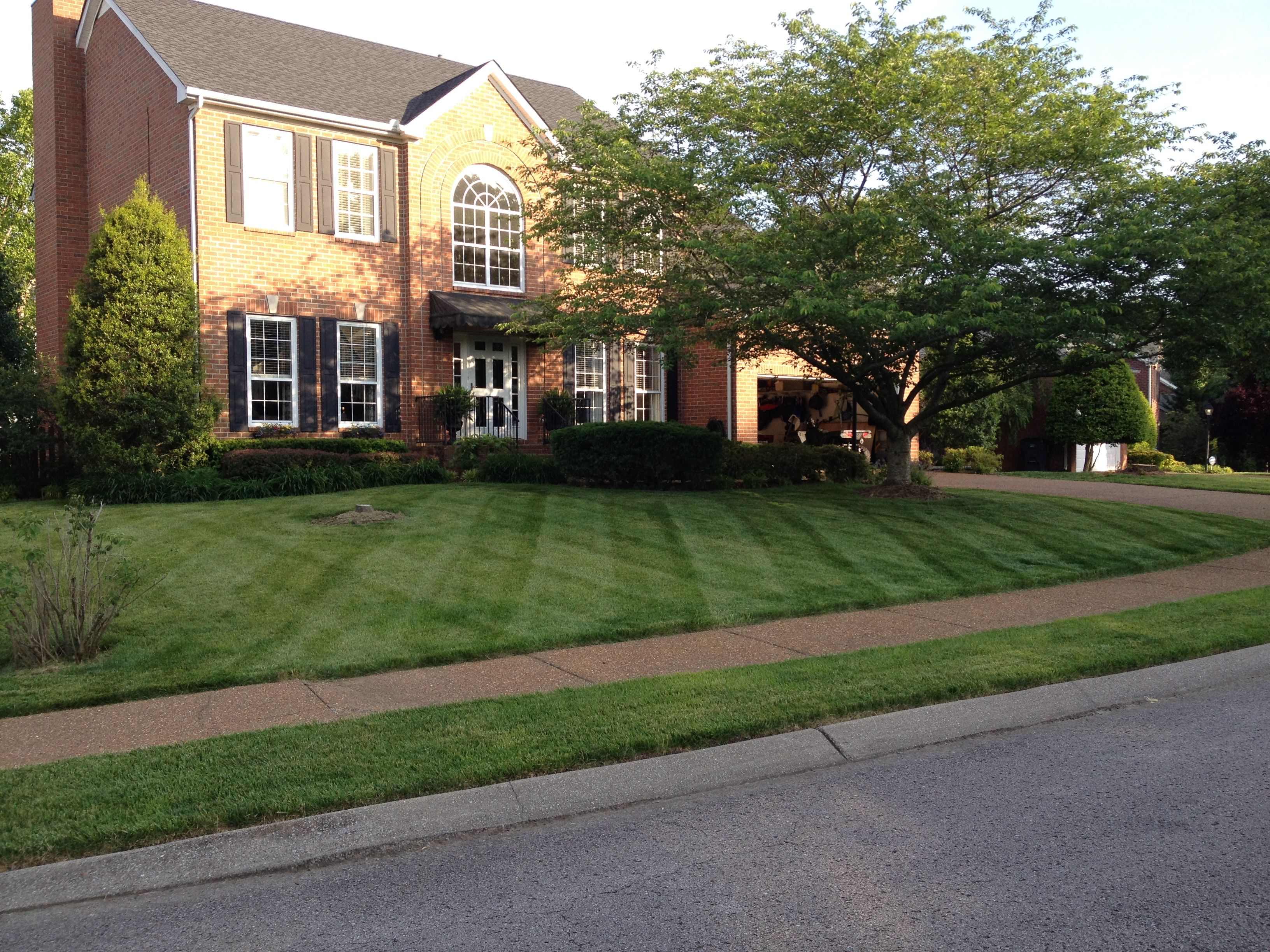 Yard mowing company in Nashville, TN, 37221