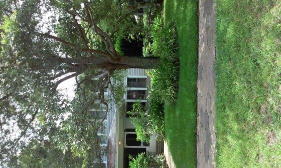 Yard mowing company in St Petersburg, FL, 33701
