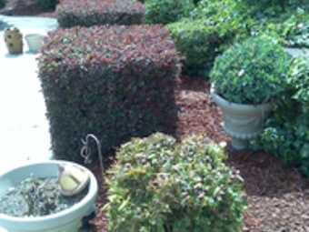 Yard mowing company in Kennesaw, GA, 30144