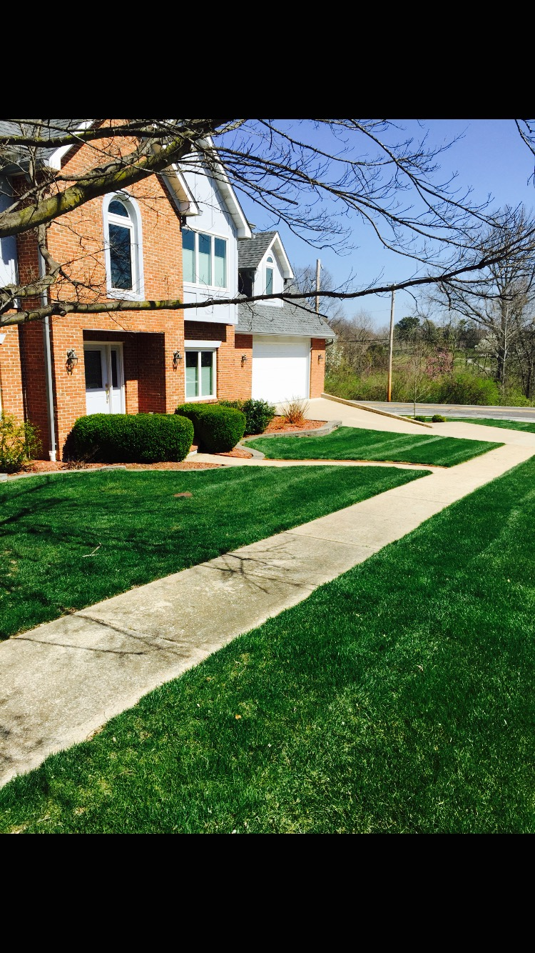 Yard mowing company in St. Louis , MO, 63123