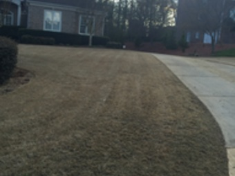Yard mowing company in Buford, GA, 30518