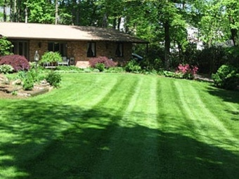 Yard mowing company in Buford , GA, 30518