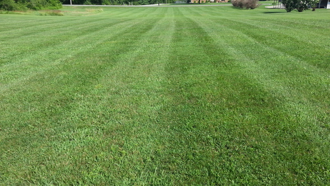 Yard mowing company in Cottontown, TN, 37048