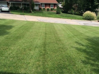Yard mowing company in Florissant, MO, 63033