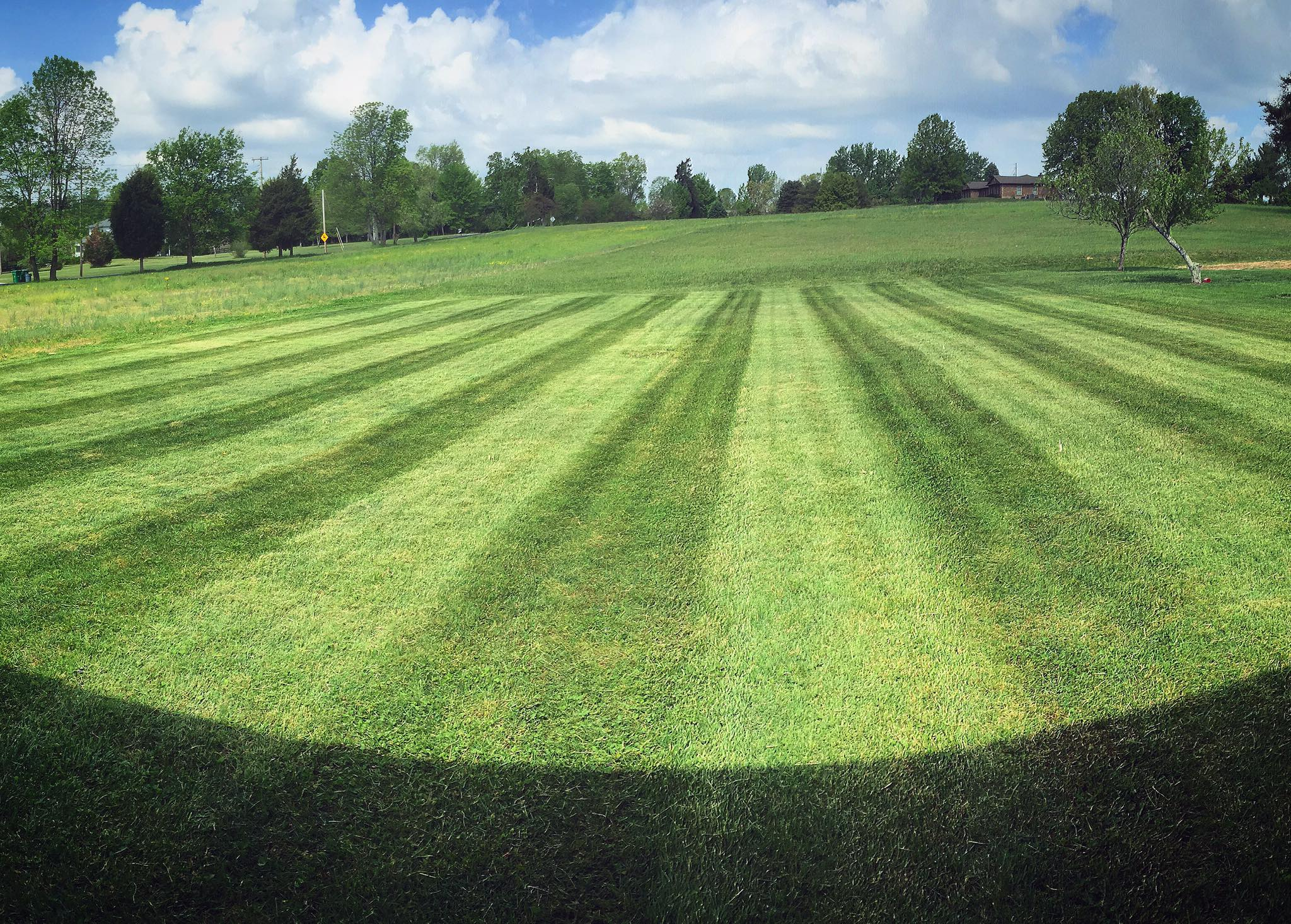 Yard mowing company in Murfreesboro, TN, 37129