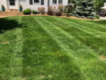 Yard mowing company in St. Louis , MO, 63125